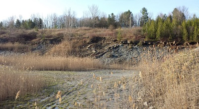 Our September Meeting: The Geology and Fossils Of Arkona with Kevin Kidd The Hungry Hollow Formation is one of the premier Devonian Collecting sites in North America. Historically the formation […]