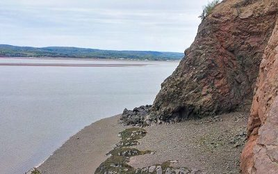 The King of Tides: Collecting Minerals in the Bay of Fundy Area with Ray McDougall  Nova Scotia's Bay of Fundy has been famous among mineral collectors for a long […]