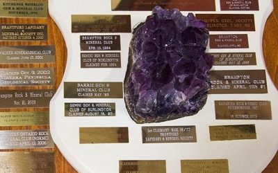 THE ROLLING STONE  In 1979 The Thunder Bay Gem and Mineral Club presented to the Central Canadian Federation of Mineralogical Societies ( CCFMS) an award to foster friendships, collaboration […]
